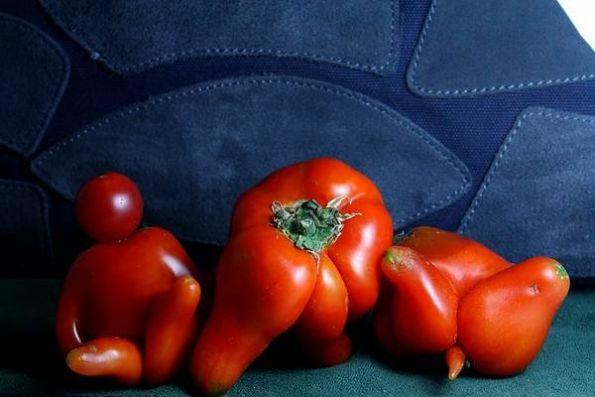 西红柿成人精了